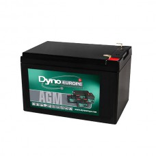 AGM BATTERY 12V 12.2AH/C20 10.9AH/C5 T2